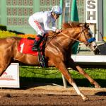 Improbable Gives Baffert Fifth Straight Los Al Futurity