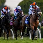Road to 2021 Breeders' Cup: Three Heating Up, Three Cooling Down for Oct. 13