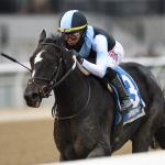 Independence Hall's Co-Owner Aron Wellman on His Colt's Florida Derby Chances and More