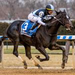Analyzing Unbeaten Independence Hall's Kentucky Derby Chances