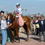 Inside the Numbers: 2020 Santa Anita Derby