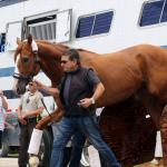 Triple Crown Winner Justify Returns to Churchill Downs