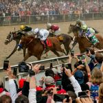 Twelve Things You Should Know About the 2019 Preakness Stakes