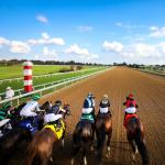 StableDuel Contest Picks for Keeneland's Wednesday Oct. 13 Card