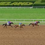 'Keeneland at Home' Offers Fans a New Experience for Upcoming Summer Meet