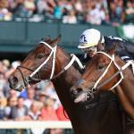 My Favorite Racehorse You've Never Heard Of: Memories from Team ABR