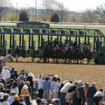Where to Watch/Listen: Horse Racing Coverage for April 15-20