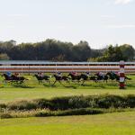 Dan's Double: Keeneland Saturday Turf Selections