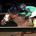 Road to the Derby: Trainer Diodoro Excited About Keepmeinmind's Prospects