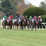 StableDuel Strategy for Keeneland's Thursday Oct. 15 Races