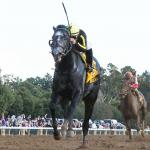 The Year's Best Races, #13: Knicks Go Pulls A 70-1 Shocker in Breeders' Futurity