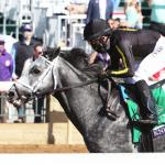 Knicks Go Could Play 'Come Catch Me' in Pegasus World Cup