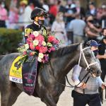Key Takeaways from Pegasus World Cup Day