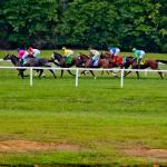 Where to Watch/Listen: Horse Racing Coverage for Sept. 9-13