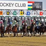 Maryland Million Quick Sheet: Get to Know the 2021 Classic Horses