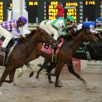Haskin's Derby Dozen for Feb. 22