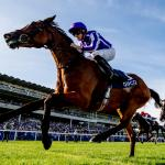 International Racehorses to Know for the 2020 Breeders' Cup