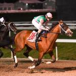 Much to Like When Evaluating Kentucky Derby Contender Mandaloun