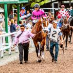 Using History to Handicap the 2019 Haskell Invitational