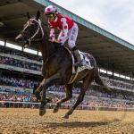 2019 Longines Breeders' Cup Distaff Cheat Sheet