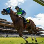 Road to 2019 Breeders' Cup: Three Heating Up, Three Cooling Down for Aug. 21