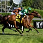 Live Longshots and Value Plays for Action-Packed Belmont Stakes Weekend
