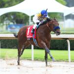 Time Now on Lightly Raced Nadal's Side in Kentucky Derby Picture