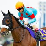 Horses to Know for 2019 Dubai World Cup Card