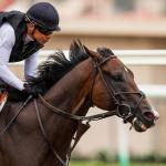 Breeders' Cup Classic Rankings for Oct. 8