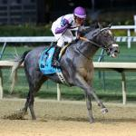 Pavel Scores in Stephen Foster, Qualifies for Breeders' Cup