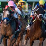 Everything You Need to Know About the 2018 Pegasus World Cup