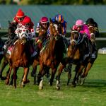 Where to Watch/Listen: Pegasus World Cup Week 2021