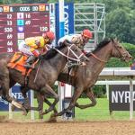Two Horses to Bet with Tiz the Law in a Travers Trifecta