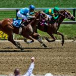 Top Win Contenders in the 2021 Black-Eyed Susan Stakes