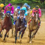 Post-Preakness Stakes: Three Heating Up, Three Cooling Down