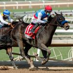 Five Vulnerable Favorites in 2020 Breeders' Cup