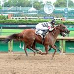 Top Win Contenders in Raven Run Stakes