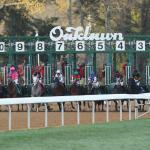 Haskin's Derby Dozen for March 22