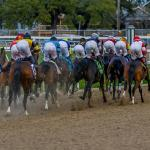 Where to Watch/Listen: Horse Racing Coverage for Feb. 13-15