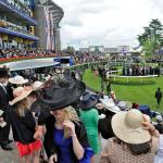 Familiar Horses to Follow at Royal Ascot
