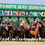 2021 Tampa Bay Derby Cheat Sheet