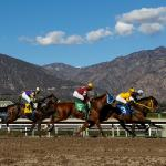 Best Bets: Stakes Standouts at Santa Anita, Fair Grounds