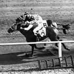 Del Mar History: The Seabiscuit vs. Ligaroti Match Race