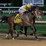Breeders' Cup Classic Rankings for June 18