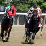Unmistakable Determination the Trademark of Fan-Favorite Serengeti Empress