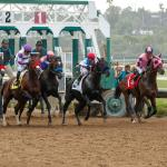 Which Horses Are Big Movers in Sept. 15 Breeders' Cup Classic Rankings?
