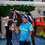 'Home Run Hitter' Shedaresthedevil Takes Staton Flurry to Breeders' Cup