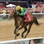 Where Does Springboard Mile Victor Shoplifted Fit in Derby Picture?