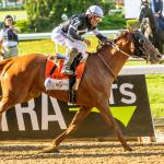Triple Crown, Breeders' Cup Challenge Series Highlight Upcoming  NBC National TV Coverage