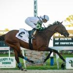 Longshots to Consider When Betting the 2020 Kentucky Derby